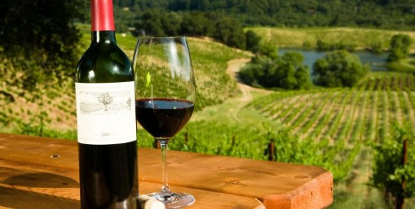 Los mejores vinos ecológicos