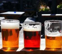 Festival Internacional del Taco y la Cerveza