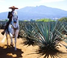 Promocionan el Circuito del Tequila