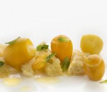 Naranjas mini y camu camu de Arzak