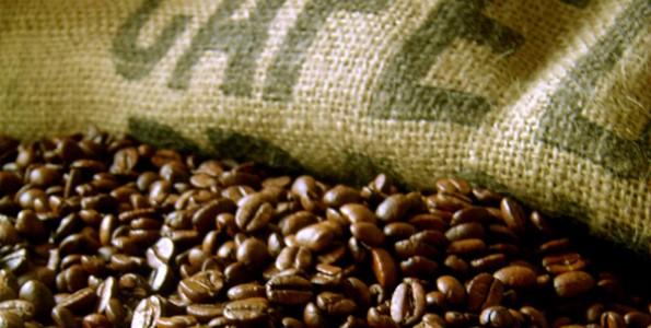 Convención Internacional del Café