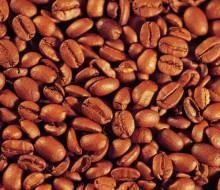 Avanza México en recuperación productiva de café
