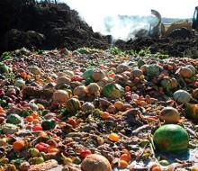 México desperdicia demasiada comida
