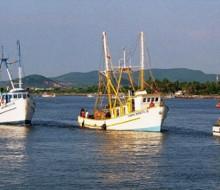 Programas de Productividad de Pesca