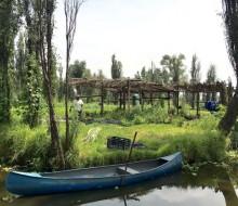 Ricard Camarena se apoya en agricultores locales para Canalla Bistro México