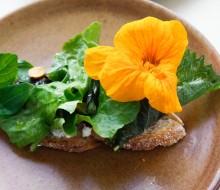 Oaxaca reivindica su gastronomía en El Saber del Sabor