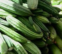 México gran productor de frutas y poco consumidor